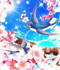 心桜(こころ)(ココロ)先生画像