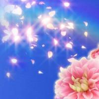 七虹(ナナコ)先生画像